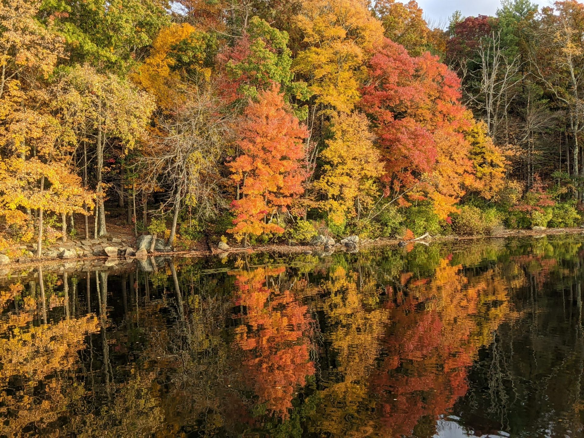Fall leaves reflected Ashland State Park