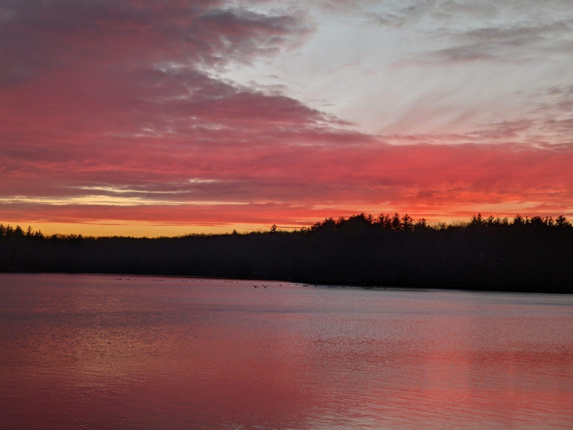 Salmon Sunset January 6, 2021 Ashland State Park
